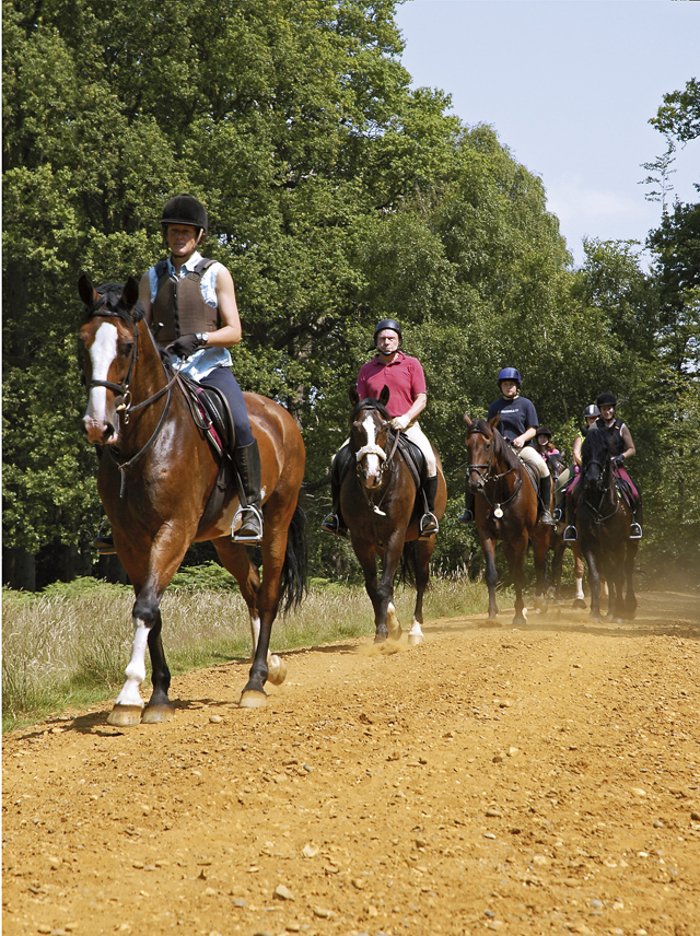 Win a Luxury Horse Riding Holiday