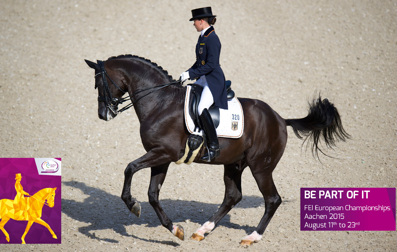 Equestrian Events Worldwide