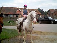 Unaccompanied Childrens Riding in Berkshire