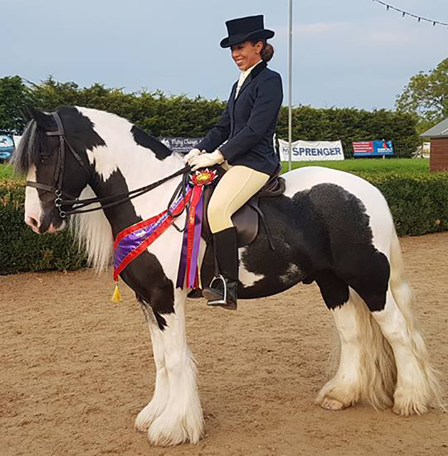 Abandoned cob turned showing star qualifies for Royal International