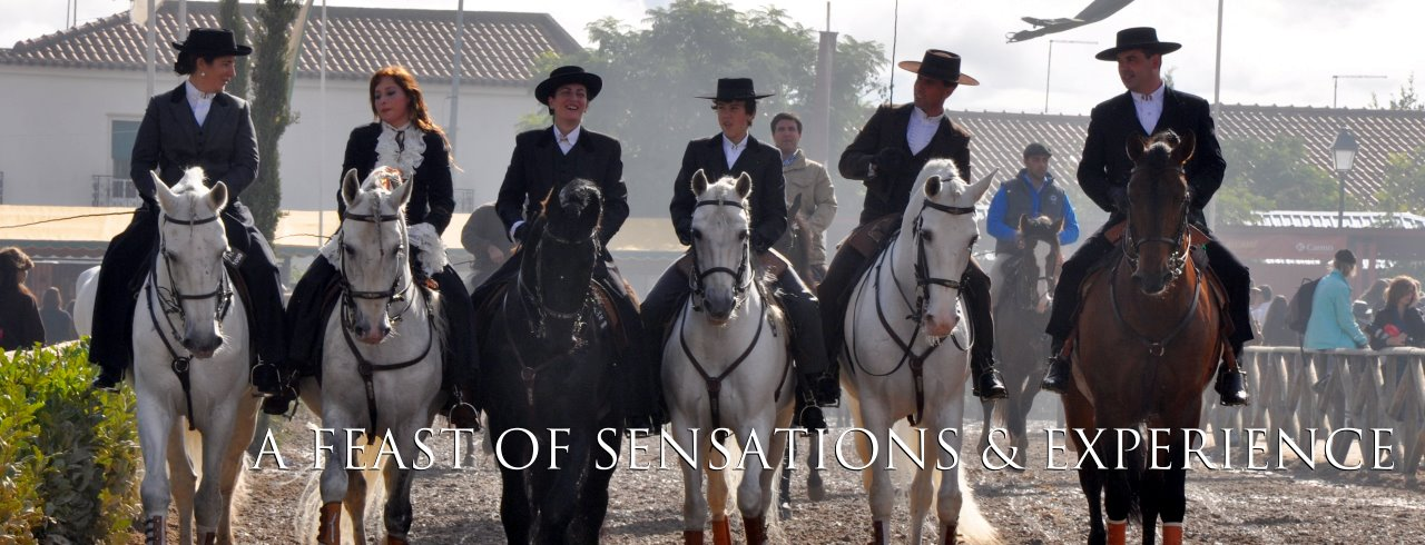 BEHIND THE SCENES OF Golegã National Horse Fair