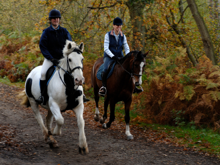 Hacking out this Autumn with Equestrian Escapes