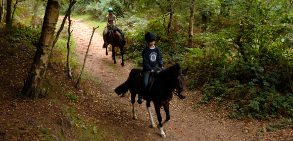Delamere Forest - Bring Own Horse from £140pp