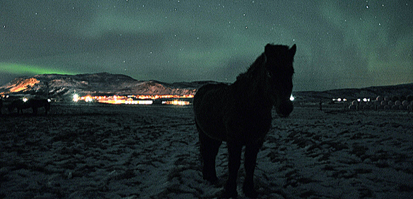 Riding Holiday Northern Lights Iceland