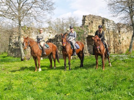 Explore Majestic Tuscany On Horseback