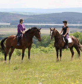 Equestrian Escapes News