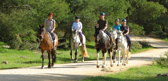 Top 10 Horse Riding Holidays In Spain