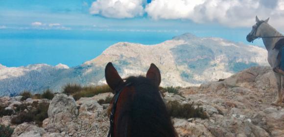 Mallorcan Monastery Trail