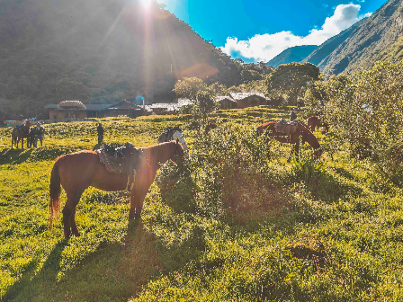 Ride to Machu Picchu, Peru