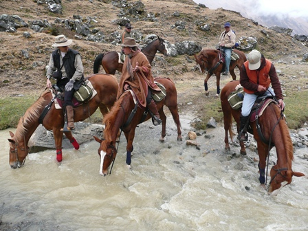 History Of Horses On The Inca Trail