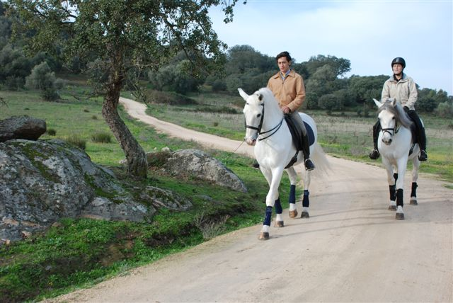 Lusitano Luxury and Culture Riding Break