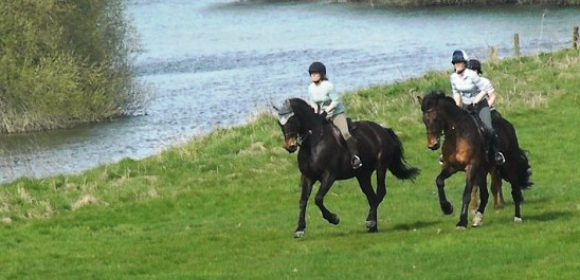 Private Riding in Shropshire from £305pp