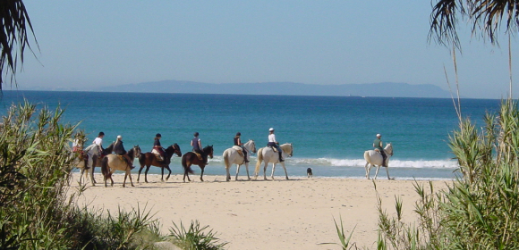 Flexible Beach Ride from £395pp