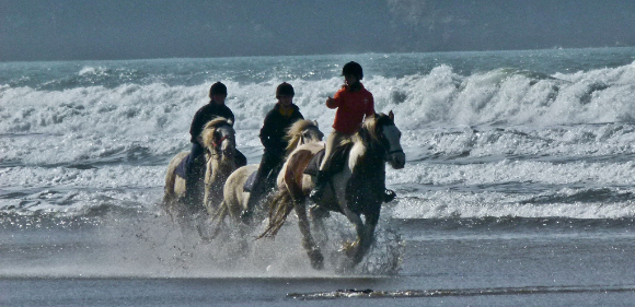 Bring own horse, North Wales from £155pp