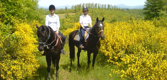 Castle Based Trail Ride from £850 pp