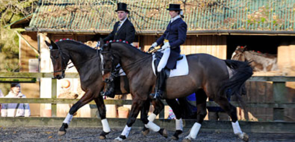 Dressage Break from £325pp