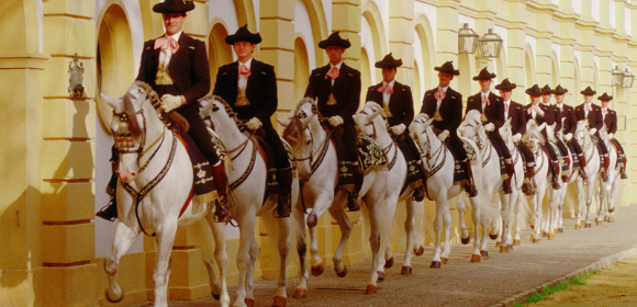 An Equestrian Dream from £995pp