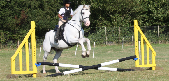 Unaccompanied Childrens Riding in Wiltshire from £650pp