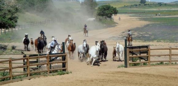 Ranch riding in Andalucia from £975pp