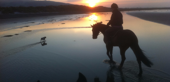 Beach Ride North Wales from £280pp