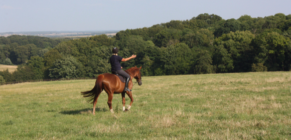 West Country Riding, Wiltshire from £275pp