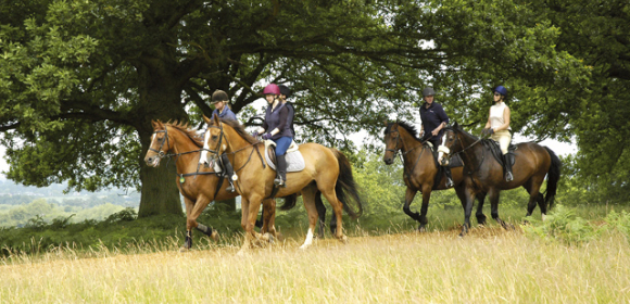 Luxury Riding & Spa Break Cheshire