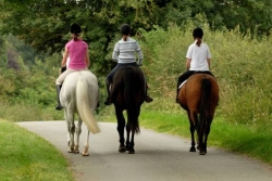 Horse Riding Weekends
