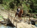 Riding Holiday Peru