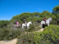 Riding Holiday Andalucia