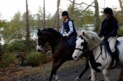 Family Horse Riding Holiday
