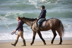 Horse Riding Holiday