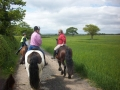 Riding Holidays Cheshire