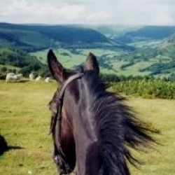 1 week trail ride Brecon | 6